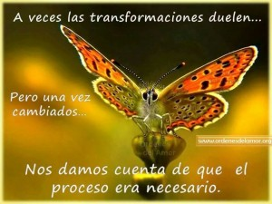 Crisis y transformación.1