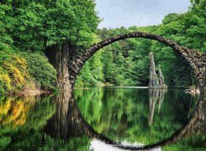 bosque-y-lago